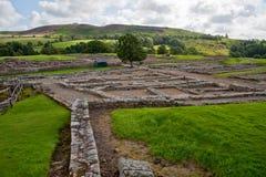 Vindolanda ruins Stock Photo