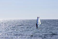 Vindsurfa havet royaltyfria bilder