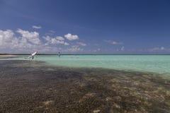 Vindsurfar det karibiska havet för den Bonaire ön lagun Sorobon Arkivbild