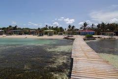 Vindsurfar det karibiska havet för den Bonaire ön lagun Sorobon Arkivbilder