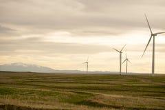 Vindturbiner i Colorado Arkivbilder