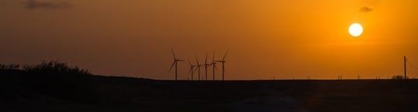 Vindturbiner på den orange solnedgången i det lantligt av Corpus Christi, Texas, USA Arkivfoton
