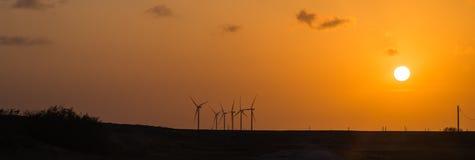Vindturbiner på den orange solnedgången i det lantligt av Corpus Christi, Texas, USA Arkivbilder