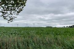 Vindturbiner på ett fält i Tyskland royaltyfri fotografi