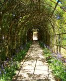 Vine arbor tunnel. Vine covered arbor tunnel in formal historic gardens Royalty Free Stock Photography