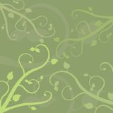Vine Background. Vector background with vine ornaments stock illustration