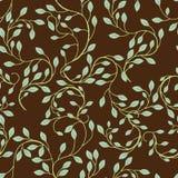 Vine Background Pattern Royalty Free Stock Image