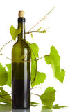 Vine and bottle Stock Photography