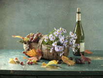 Vine and bottle of wine Royalty Free Stock Image