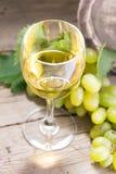 Vine Stock Photography
