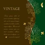 Vine branch design Stock Images
