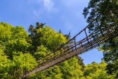 Vine bridge in Okuiya. Japan ; kazura is a kind of vine stock photography