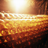 Vine cellar Royalty Free Stock Images