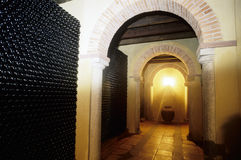 Vine cellar Royalty Free Stock Photo