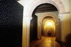 Vine Cellar Royalty Free Stock Photo
