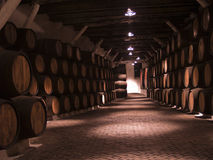 Vine cellar Stock Image