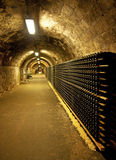 Vine cellar Stock Photography