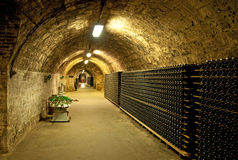 Vine Cellar Stock Photos