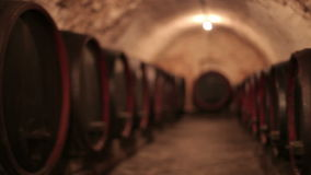 Vine cellar stock footage
