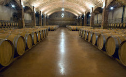 Vine cellar Royalty Free Stock Photos