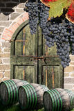 Vine cellar with vine barrels. In Chianti, Toscany, Italy, famous landscape stock image
