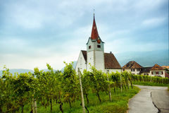 Vine and chapel Royalty Free Stock Images