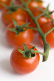 Vine cherry tomatoes Stock Photo