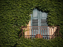 Vine coverd balcony in Italy. Vine growth has all but covered this building in Italy leaving the balcony exposed to sunlight Stock Photography
