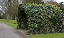 Vine covered Garden Arch. At the Stadtpark, city park in Lahr Baden Germany Stock Images
