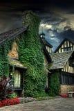 Vine covered house Stock Photos