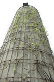 Vine Covered Silo. Vine covered grain silo or bin Royalty Free Stock Photos