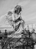 Vine Covered Statue. In the cemetery Royalty Free Stock Photography