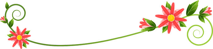 Vine Flourish Stock Images