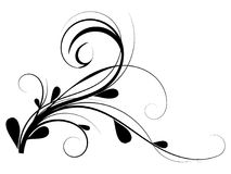 Vine flourish. Digital artwork,Flourish design element isolated on background