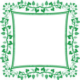 Vine frame Royalty Free Stock Photos