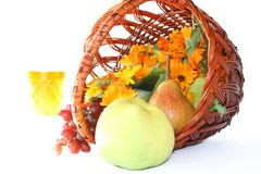 Vine and fruit in basket Royalty Free Stock Photo