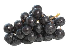 Vine grape Stock Photo