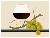 Vine and grapes Royalty Free Stock Photos