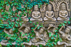 Vine growing on buddha statue wall Royalty Free Stock Photography