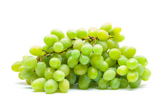Vine Royalty Free Stock Images
