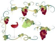 Vine leaves vector illustration