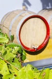 Vine leaves with blurred wine cask Stock Photo