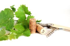Vine leaves and corks Royalty Free Stock Photo