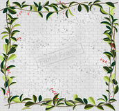 Vine leaves creeper over  brick wall pattern Royalty Free Stock Photos