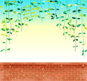 Vine leaves creeper over sky with brick wal Stock Photo