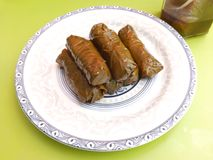 Vine leaves Royalty Free Stock Images