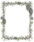 Vine, leaves, grapes, frame Stock Photo