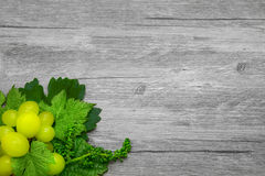 Vine leaves and grapes Royalty Free Stock Image