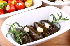Vine leaves stuffed and garlic with Mediterranean antipasto Royalty Free Stock Image