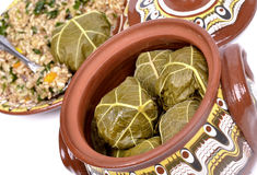 Vine leaves stuffed Stock Photos